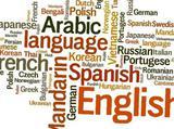 Английский, французский. Русский для иностранцев